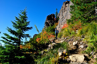 BillEdwards-Vine Maple-Kelly Butte-2710_TMTC.jpg